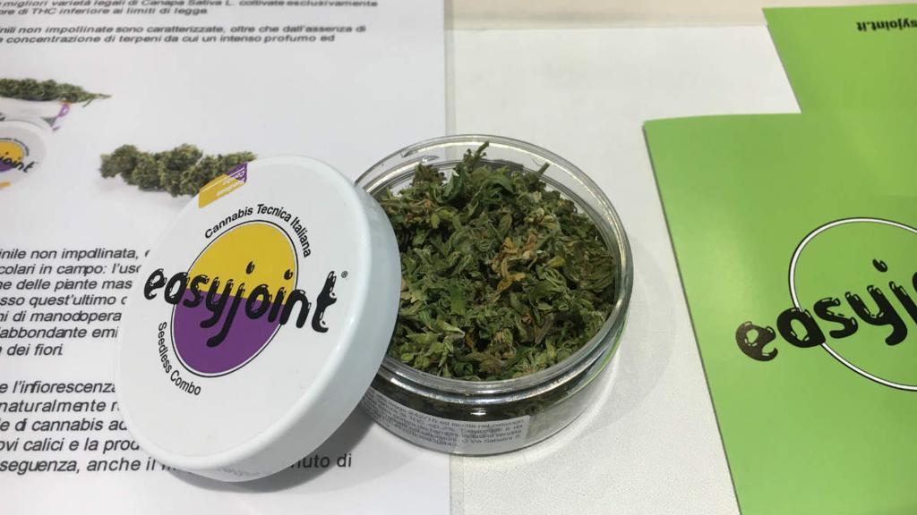 Easyjoint: i precursori italiani della Cannabis legalizzata