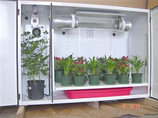 Realizzare una Grow Box nell'armadio? Vediamo Come fare